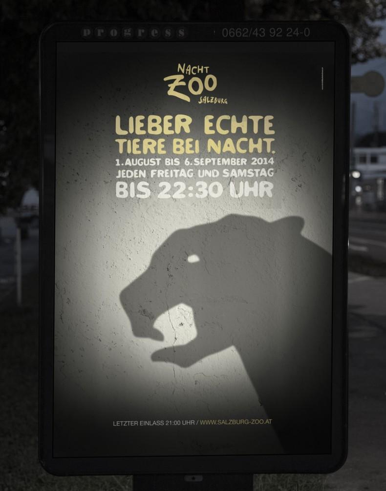 Nacht-Zoo Salzburg – Plakat mit Panther