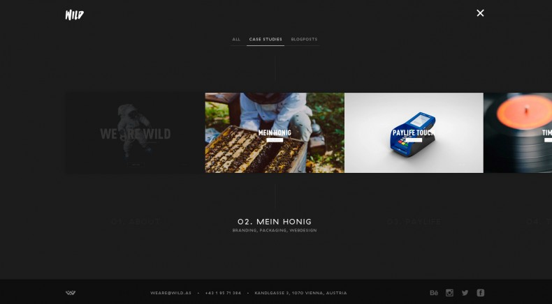 Wild Agency Website – Overview