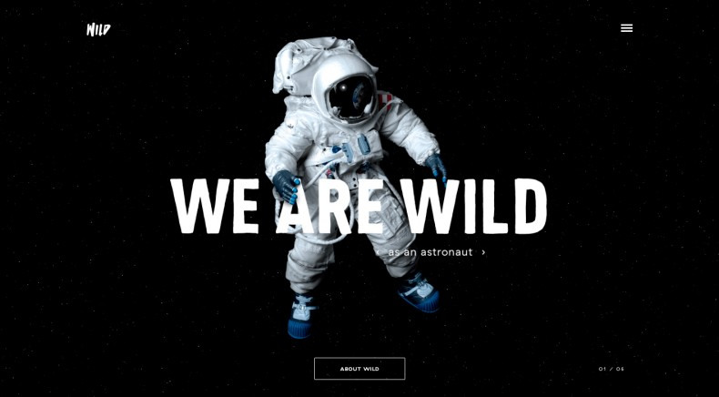 Wild Agency Website – Home