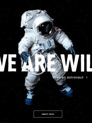 Wild Website Cover