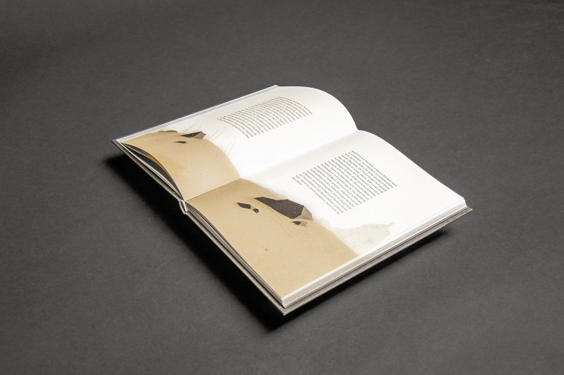 Interactive Reading