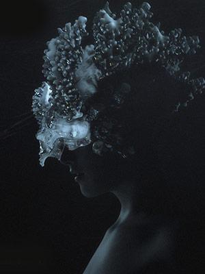 Cover Fabian Luttenberger –Electrolyte