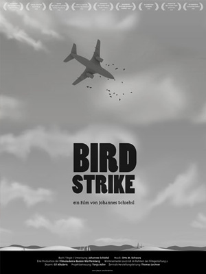Bird­strike