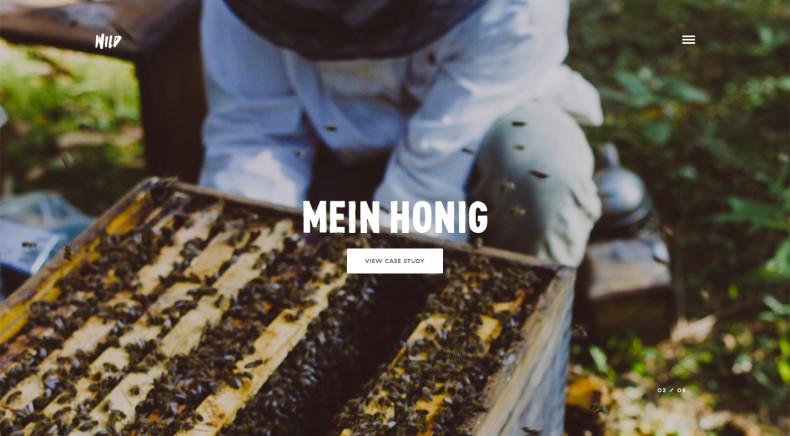 Wild Website – Mein Honig 0