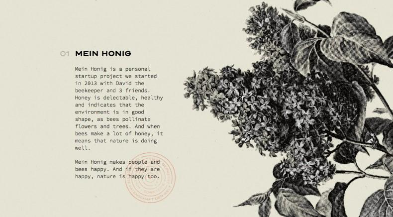 Wild Website – Mein Honig 2
