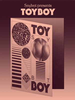 Toyboy Cover