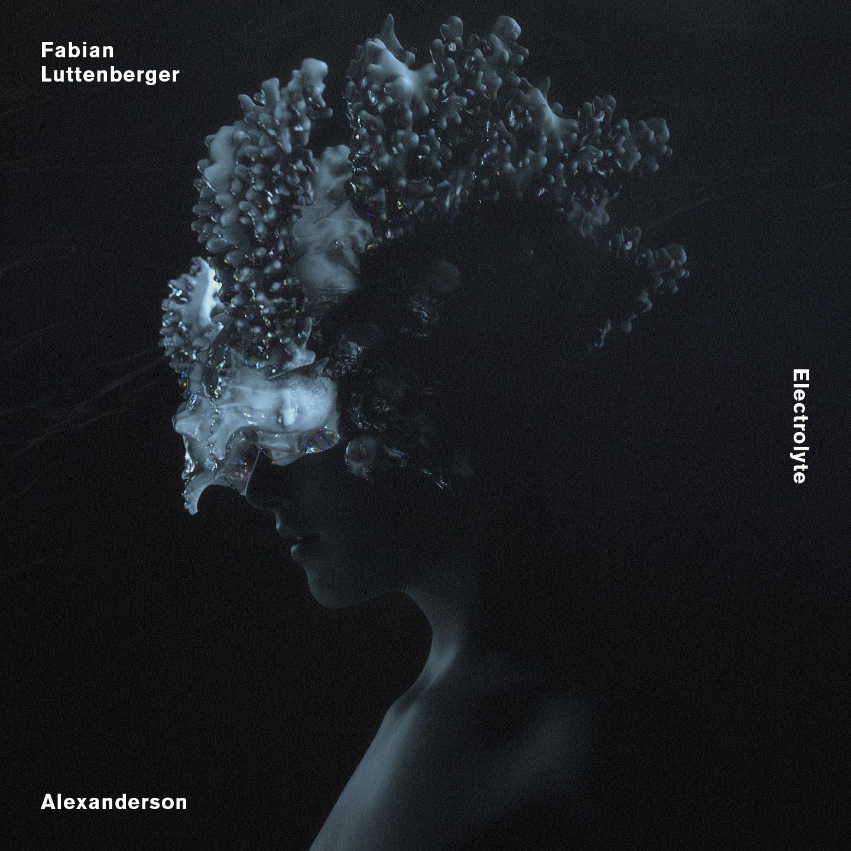 Fabian Luttenberger – Elektrolyte