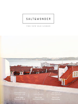 Cover – Salt & Wonder