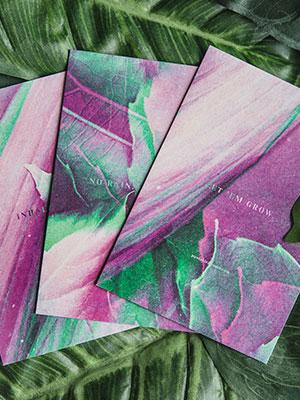 Natural Spring Cards
